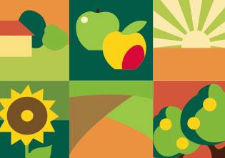 国家有机食品认证标志