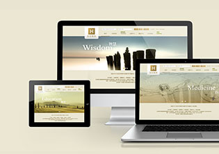慧生信网站设计